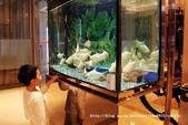 【桃園市】翰品酒店-桃園CHATEAU de CHINE~品味典雅與文化的商務行旅:12IMG_8300.jpg