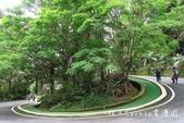 【南投旅遊】國立自然科學博物館 鳳凰谷鳥園生態園區~親子賞鳥 森林溜滑梯 吊橋瀑布 松鶴園 提供銀髮: