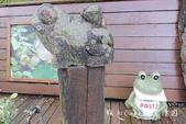 【埔里住宿】綠窩‧綠舍民宿~桃米生態村-紙教堂附近生態民宿‧主人親帶溯溪賞青蛙遊程‧適合親子帶寵物: