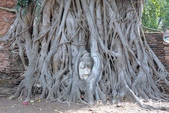 大城府Ayutthaya阿瑜陀耶遺址與日落遊船:DSC06973.jpg