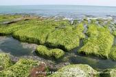 【新北市石門區】老梅綠石槽~季節限定的海濱美景:IMG_0707.jpg