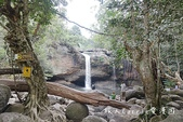 考艾國家公園/大山國家公園(Khao Yai National Park)~徜徉世界自然遺產,飽覽瀑:DSC06101.jpg