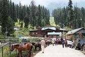 【喀什米爾Kashmir】貢馬Gulmarg‧喜馬拉雅Himalaya~世界第一的高山纜車:01IMG_7243.jpg