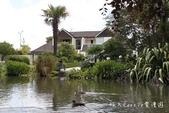 【紐西蘭New Zealand】為基督城Christchurch大地震默哀祈福‧追憶夢娜維爾花園Mo:08IMG_4335.jpg