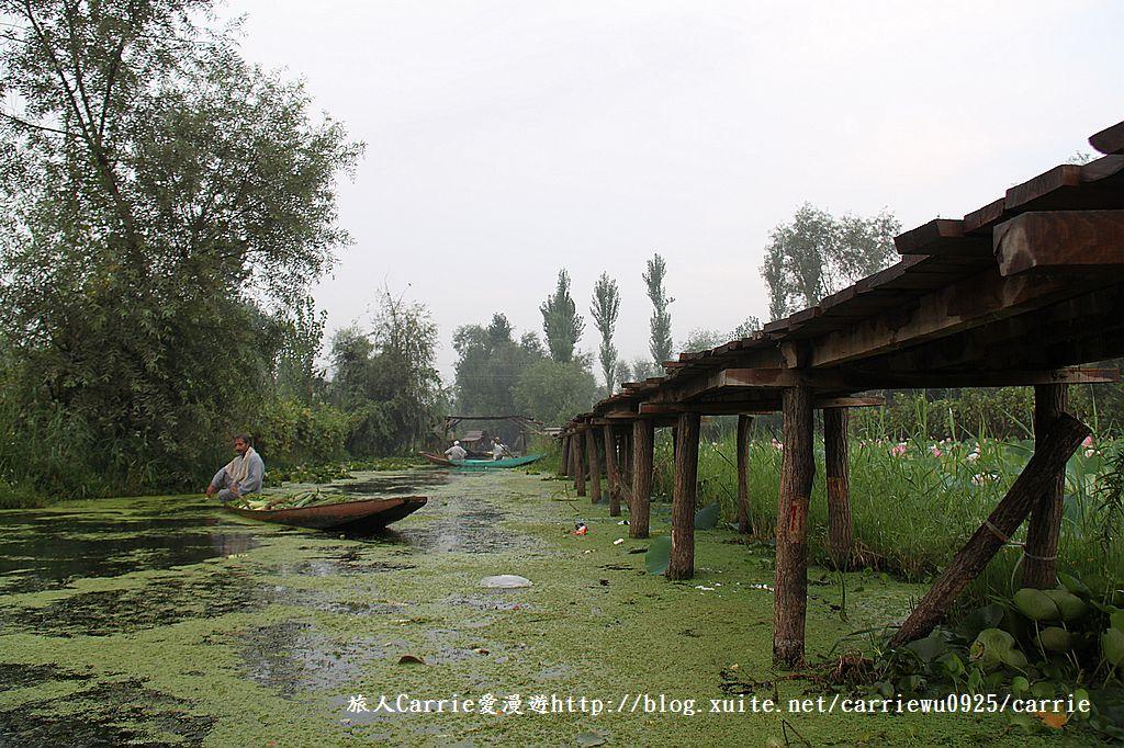 【喀什米爾Kashmir】印度India‧斯里那加Srinagar‧達爾湖Dal Lake~水上市場:IMG_0260.jpg