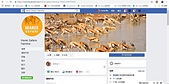 Mojhi、Marek Safari納米比亞惡質旅行社事件始末 2019/06/15:15Marek Safari的臉書.jpg
