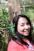 【我的馬達加斯加之旅講座】創意星球–星球國際旅行社‧後棟-世界遺產教室:IMG_0815.JPG