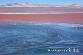 【玻利維亞旅遊】烏尤尼Uyuni天空之鏡三日團 Day2‧Salty Desert Aventour:DSC00980.jpg