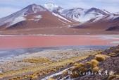 【玻利維亞旅遊】烏尤尼Uyuni天空之鏡三日團 Day2‧Salty Desert Aventour:DSC00989.jpg