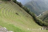 印加古道2天1夜‧Llama Path馬丘比丘私人嚮導團~挑戰連續8小時Inca Trail高強度健:42DSC05667.jpg