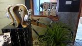 【台北市大同區】蛙咖啡永樂店~迪化街老房子古蹟咖啡飄香:09P1360832.jpg