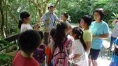 【台北士林】芝山文化生態綠園~在都會綠世界探索昆蟲大奧秘‧蝴蝶標本製作:P1610868.jpg