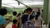 【台北士林】芝山文化生態綠園~在都會綠世界探索昆蟲大奧秘‧蝴蝶標本製作:P1610884.jpg