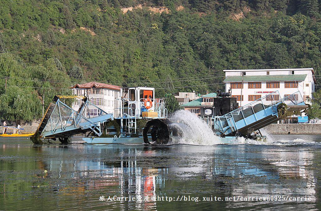 【喀什米爾Kashmir】印度India‧斯里那加Srinagar‧達爾湖Dal Lake~船屋歲月:IMG_8767.jpg