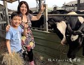 【彰化旅遊】藝起玩秀水親子一日遊~洋傘彩繪+水槍傘仗+牧場餵牛+捏陶+爆米香DIY‧泳霖牧場‧富雨洋: