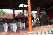 【南印喀拉拉旅遊】以熱烈印度教祭典迎接南印喀拉拉的第1天‧喀拉拉象神節慶Thrissur Poora: