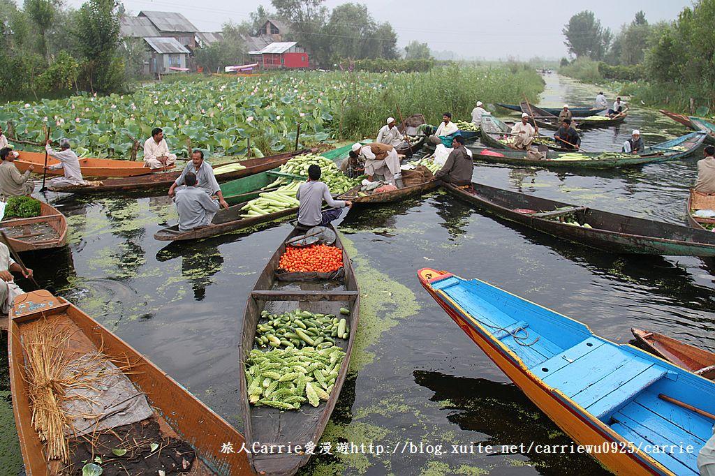 【喀什米爾Kashmir】印度India‧斯里那加Srinagar‧達爾湖Dal Lake~水上市場:IMG_0152.jpg