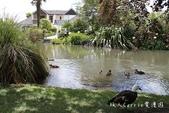 【紐西蘭New Zealand】為基督城Christchurch大地震默哀祈福‧追憶夢娜維爾花園Mo:06IMG_4332.jpg
