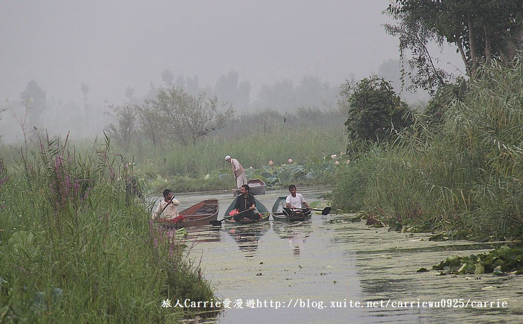 【喀什米爾Kashmir】印度India‧斯里那加Srinagar‧達爾湖Dal Lake~水上市場:IMG_0153.jpg