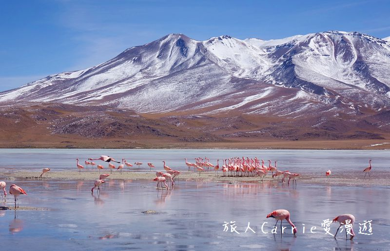 【玻利維亞旅遊】烏尤尼Uyuni天空之鏡三日團 Day2‧Salty Desert Aventour:19DSC00733.jpg