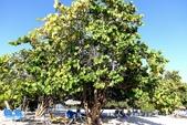 【古巴旅遊】千里達(Trinidad)安肯海灘(Playa Arcon)~這裡才是正宗加勒比海海灘!:07DSC01318.jpg