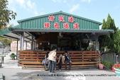【台南】四草‧紅樹林綠色隧道~台江國家公園裡的台灣袖珍版亞馬遜河:05IMG_5677.jpg