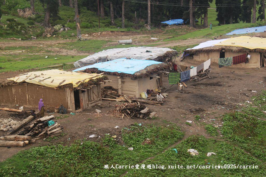 【喀什米爾Kashmir】貢馬Gulmarg‧喜馬拉雅Himalaya~世界第一的高山纜車:19IMG_7281.jpg
