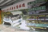 【台南】四草‧紅樹林綠色隧道~台江國家公園裡的台灣袖珍版亞馬遜河:07IMG_5688.jpg
