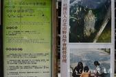 【台北士林】芝山文化生態綠園~在都會綠世界探索昆蟲大奧秘‧蝴蝶標本製作:P1610858-1.jpg