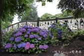 【紐西蘭New Zealand】為基督城Christchurch大地震默哀祈福‧追憶夢娜維爾花園Mo:11IMG_4342.jpg