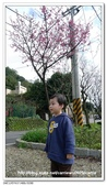 台灣新北市三芝:13P1160405.jpg