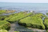 【新北市石門區】老梅綠石槽~季節限定的海濱美景:IMG_0712.jpg