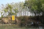 【台南】四草‧紅樹林綠色隧道~台江國家公園裡的台灣袖珍版亞馬遜河:16IMG_5784.jpg
