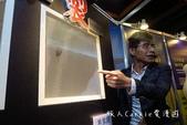 寶盛機能型紗窗【居家生活】蟲退散 愛毛網 視波銀黑 易潔網 讓孩子遠離過敏及蚊蟲危害: