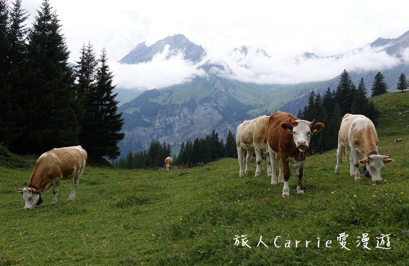 瑞士厄希嫩湖/ 歐能辛湖(Oeschinensee)~在世界自然遺產搭纜車玩滑梯健行趣【瑞士旅遊】:DSC07962.jpg