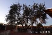 【納米比亞旅遊】南回歸線‧喀拉哈里沙漠‧岡瓦納卡拉哈里安布山林小屋 Gondwana Kalahar:17DSC08077.jpg