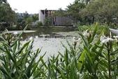 【南投埔里】紙教堂Paper Dome~來自日本的桃米生態村精神堡壘:IMG_0908.jpg