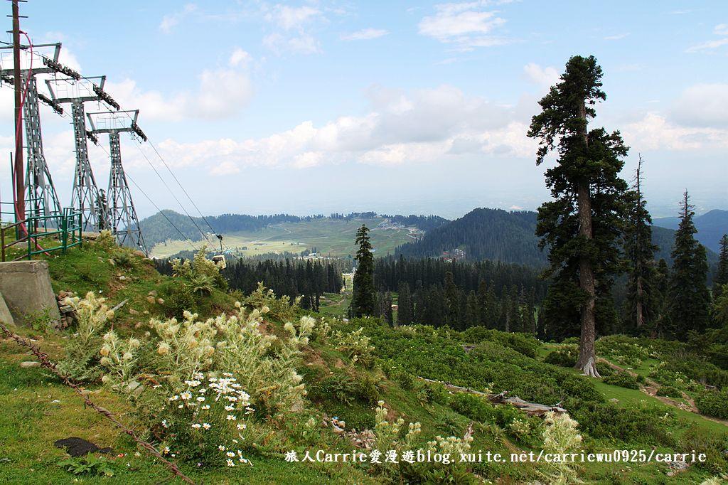 【喀什米爾Kashmir】貢馬Gulmarg‧喜馬拉雅Himalaya~世界第一的高山纜車:27IMG_7309.jpg