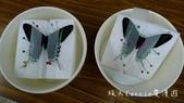 【台北士林】芝山文化生態綠園~在都會綠世界探索昆蟲大奧秘‧蝴蝶標本製作:P1610998.jpg