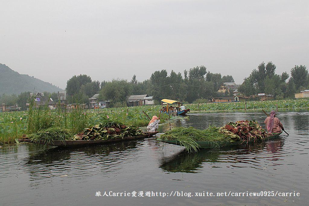 【喀什米爾Kashmir】印度India‧斯里那加Srinagar‧達爾湖Dal Lake~水上市場:IMG_0389.jpg