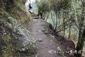 印加古道2天1夜‧Llama Path馬丘比丘私人嚮導團~挑戰連續8小時Inca Trail高強度健:14DSC05571.jpg