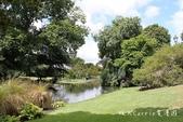 【紐西蘭New Zealand】為基督城Christchurch大地震默哀祈福‧追憶夢娜維爾花園Mo:09IMG_4339.jpg