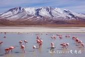 【玻利維亞旅遊】烏尤尼Uyuni天空之鏡三日團 Day2‧Salty Desert Aventour:18DSC00618.jpg