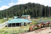 【喀什米爾Kashmir】貢馬Gulmarg‧喜馬拉雅Himalaya~世界第一的高山纜車:87IMG_7495.jpg