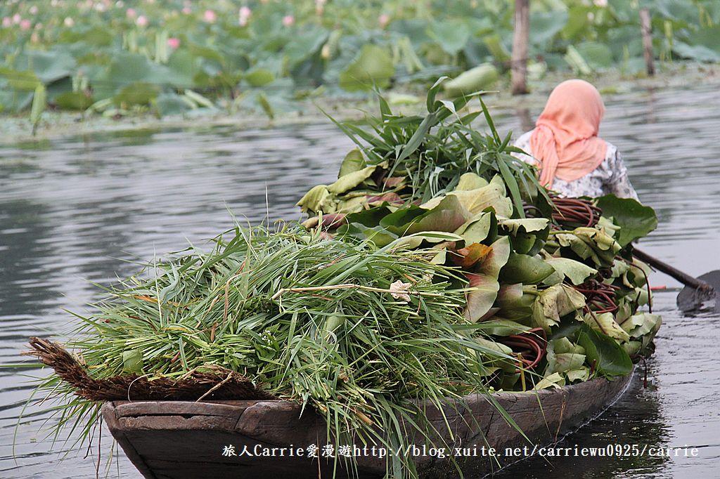 【喀什米爾Kashmir】印度India‧斯里那加Srinagar‧達爾湖Dal Lake~水上市場:IMG_0399.jpg