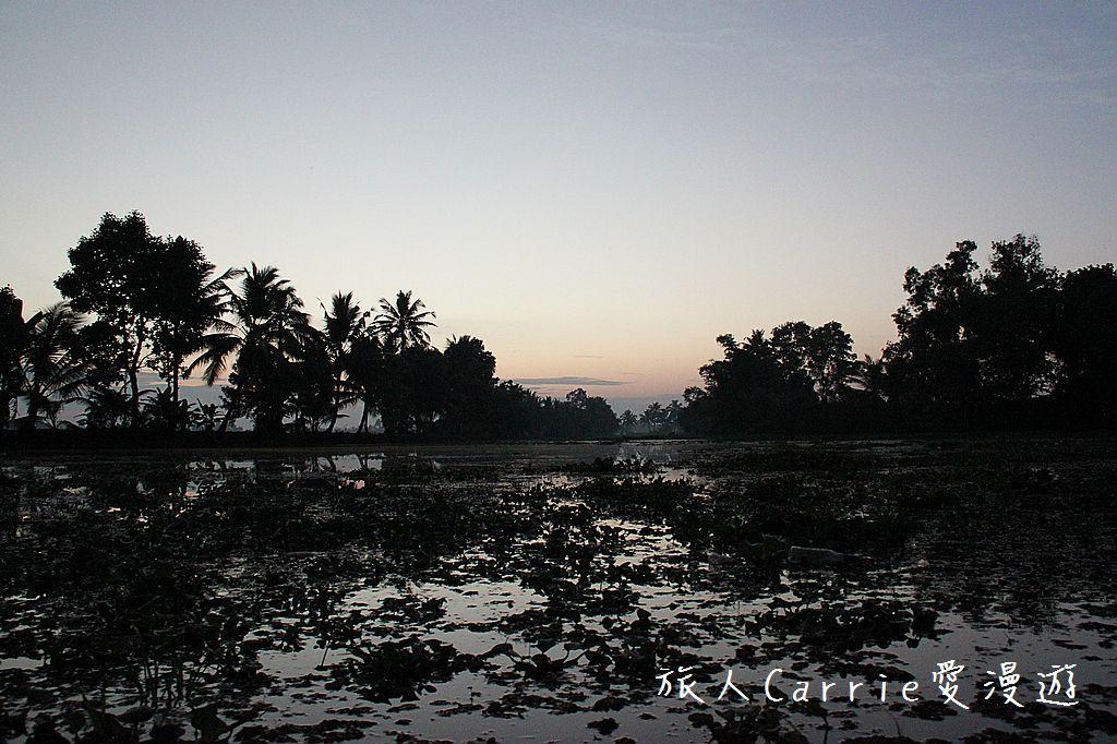【南印喀拉拉】阿勒皮Alleppey~迴水區Backwater清晨盪小舟送明月迎朝陽:IMG_9124.jpg