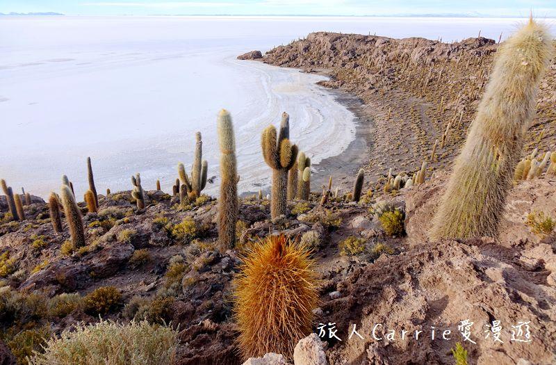 【玻利維亞旅遊】「天空之鏡」烏尤尼Uyuni三日團 Day1‧Salty Desert Avento:00DSC00001.jpg