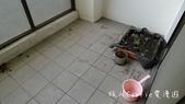 特力屋好幫手居家清潔服務~徹底打擊家中頑垢 讓居家乾淨清爽更健康:P1620074.jpg