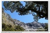 2011/1紐西蘭:53IMG_6348.jpg