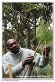 非洲肯亞2010/8:15IMG_4799.jpg